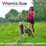 wamizrun 2018